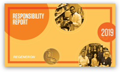 2019 responsibility report PDF download